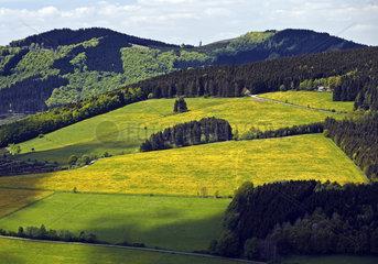 HSK_Olsberg_Landschaft_18.tif