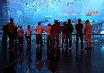 Dubai  Vereinigte Arabische Emirate  Besucher vorm Dubai Aquarium der Mall of Dubai