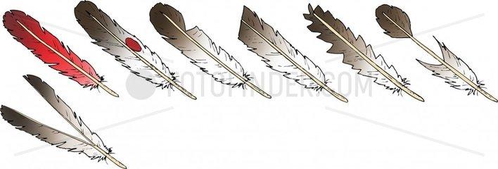 Haeuptling Federschmuck 3 Serie Indianer