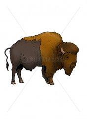 Serie Indianer Bison 1