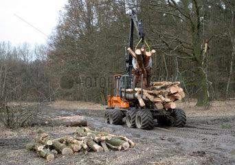 Neuenhagen  Deutschland  Baumstaemme werden abgeladen