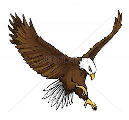 Serie Indianer Seeadler