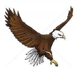 Serie Indianer Seeadler 2