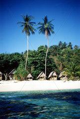 Strand Palmen Huetten  Koh Phi Phi Thailand