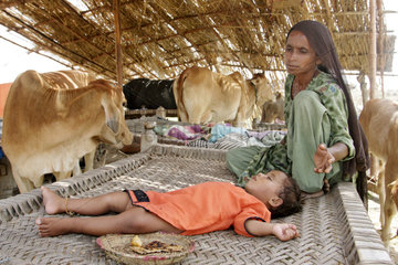 Dadu  Pakistan  Frau mit Kind in einer behelfsmaessigen Notunterkunft
