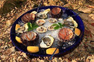 Kroatien  Kornaten  Insel Zut  Fischrestaurant Festa