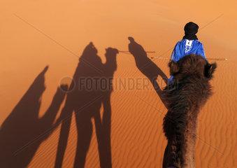 Kamelritt von Merzouga auf die Duenen des Erg Chebbi in Marokko