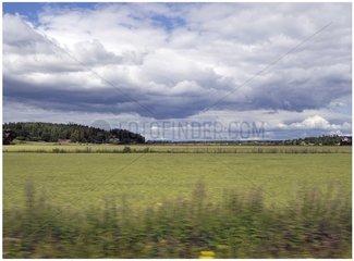 Finnland Landschaft Reisen 3