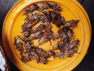 Thailand gebratene Insekten auf Markt in Bangkok