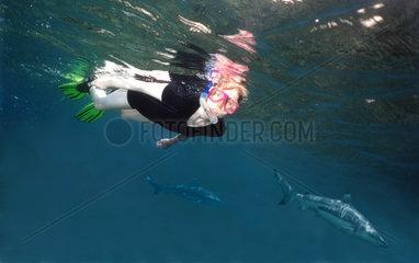 Frau beim Schnorcheln mit Schwarzspitzenriffhai
