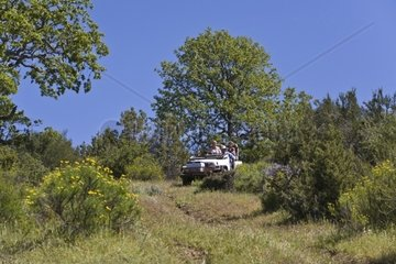 Four Wheeling in a Coastal Range cattle ranch in central CALIFORNIA