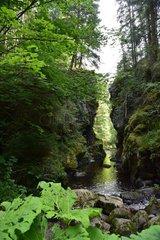 Die Haslachschlucht im Schwarzwald
