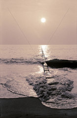 Deutschland  Meer mit Buhne  Flutsaum in der rosa Wintersonne