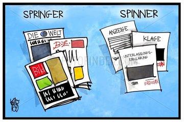 Erdogan und Springer