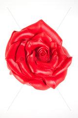 Wertheim  Deutschland  Replik einer der -1000 Rosen fuer Zweibruecken-