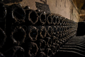 FRANCE-REIMS-AGRICULTURE-CHAMPAGNE-CELLAR