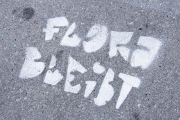 Flora bleibt als Graffiti auf einem Fussweg in Hamburg