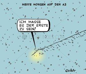 Morgens im Schnee
