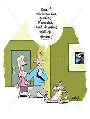 Gemeine Katze