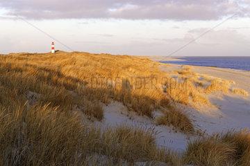 Der rot-weiss gestreifte Leuchtturm List Ost auf der Sylter Halbinsel Ellenbogen  List  Sylt  Nordfriesland  Schleswig-Holstein  Deutschland  Europa
