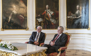 Steinmeier + Zeman