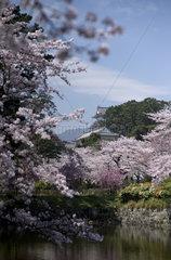 Odawara  Japan