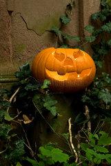 Thale  Halloweendekoration