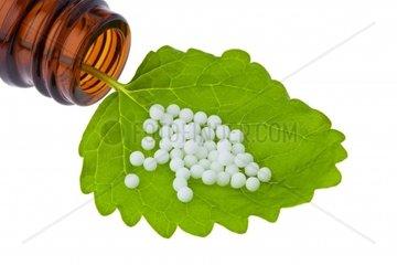 Homeopathy Globules as alternative medicine Lying on a leaf