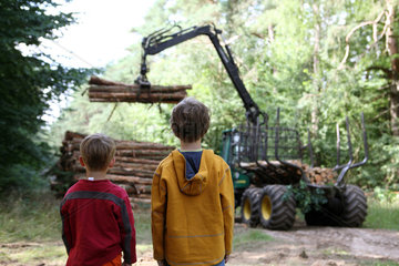 Neukloster  Deutschland  Baumstaemme werden verladen