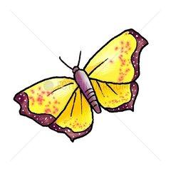 Schmetterling - Serie Fruehling