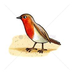 Vogel Serie Fruehling