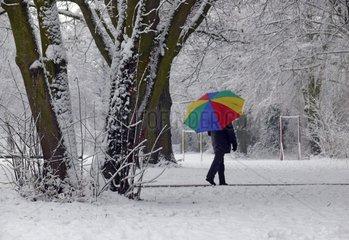 Winter Baeume Neckar Ladenburg Seiltaenzer