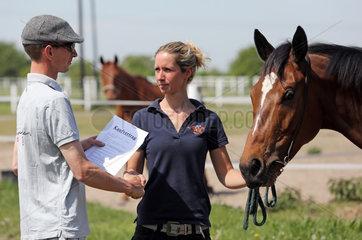 Koenigs Wusterhausen  Deutschland  Mann und Frau besiegeln einen Pferdekauf per Handschlag