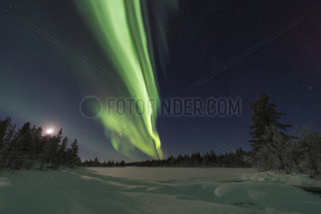 Nordlicht (Aurora borealis) ueber mondbeschienener Winterlandschaft  Lappland