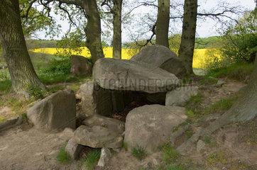 Lancken-Granitz  Deutschland  ein Huenengrab