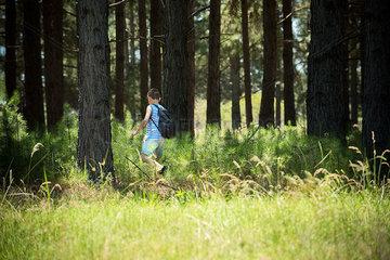 Boy hiking in woods
