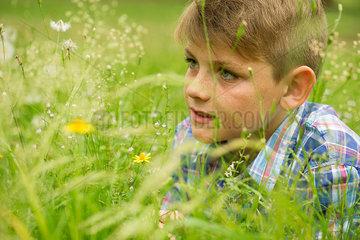 Boy in field of wildflowers