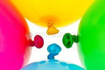 Verschiedene bunte Luftballons Symbol fuer Leichtigkeit  Freiheit  Feiern