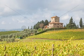 Typisches Weingut im Chiantigebiet unweit von Greve