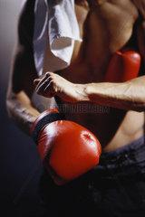 Hamburg  Deutschland  nackter Oberkoerper eines Boxers mit Boxhandschuh