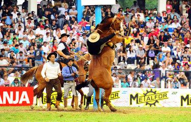 Jesus Maria  Argentinien  Reiter versucht sich auf einem steigenden Pferd zu halten