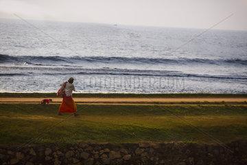 Ceylon-Hutaffe an einer Leine