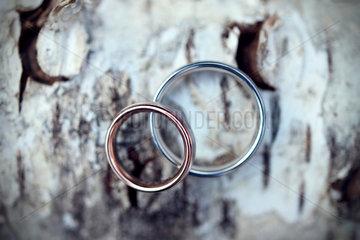 Oldenburg Deutschland  Hochzeitsringe liegen auf einer Birke