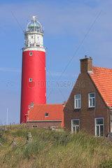 De Cocksdorp  Niederlande  Leuchtturm Eierland