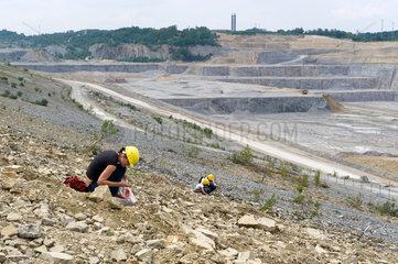 Ruedersdorf  Deutschland  geologische Fuehrungen im Kalksteintagebau