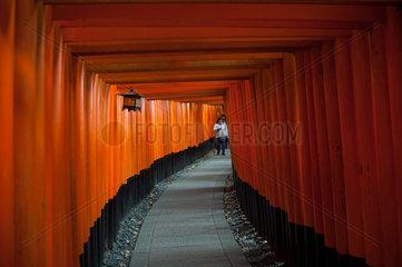 Kyoto  Japan  Torii-Weg zum Fushimi Inari-Taisha