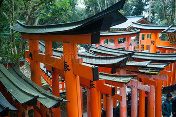 Kyoto  Japan  Holzportale entlang des Torii-Weges zum Fushimi Inari-Taisha