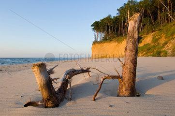 Wollin  Polen  Landschaft am Strand