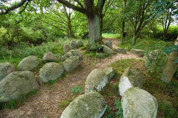 Luetow  Deutschland  Grosssteingrab bei Luetow