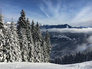 Snow covered firs with Lake Zell in the background